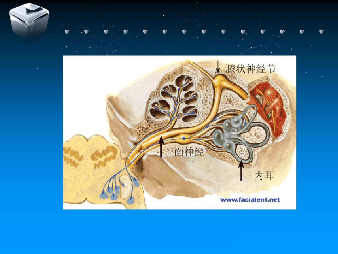 中医诊疗规范三叉神经鞘瘤集体麻痹音乐特发性面神经诊疗三叉神经中医咏鹅方案备课记录表图片