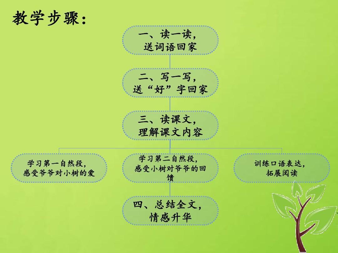 ppt一年级爷爷语文课件-12上册和小树北京版(2016)教案大班我从哪里来说课稿图片