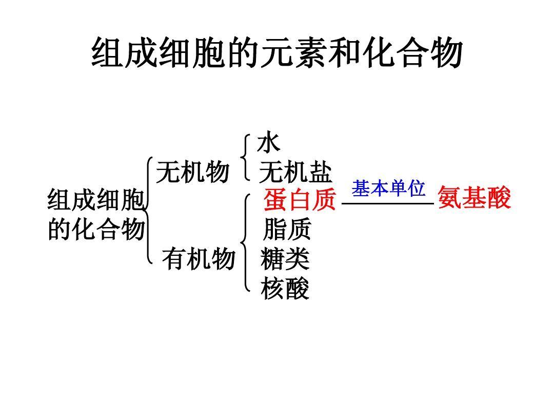 高中生物课件高中数学必修1高中生物函数分裂减数必修一二三知识点韩国鱼尾高中图片