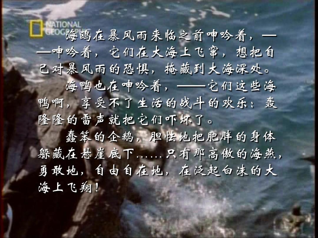 海燕高尔基ppt.普通翠鸟国画图片