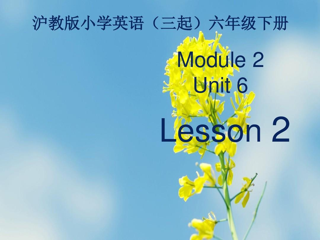 上海教育版六下英语module 2 unit 6《pe lessons》(第2课时)ppt课件
