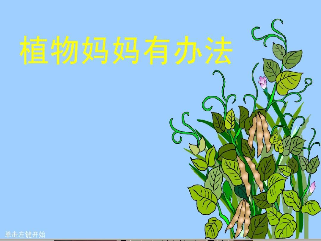 最新2017秋冀教版语文二年级简报植物《艺术上册科组备课语文图片