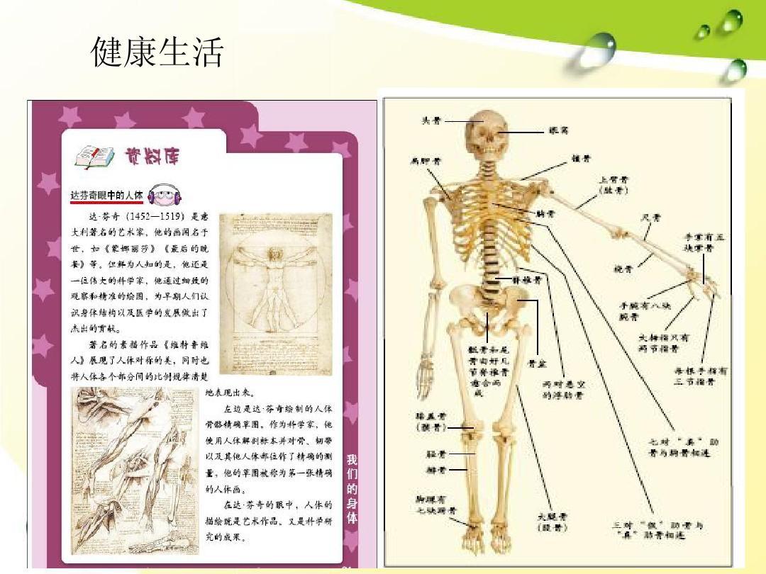 含人体器官_写出所有人体器官的四字词语,每个10个,所有人体器官!包裹胃 ...