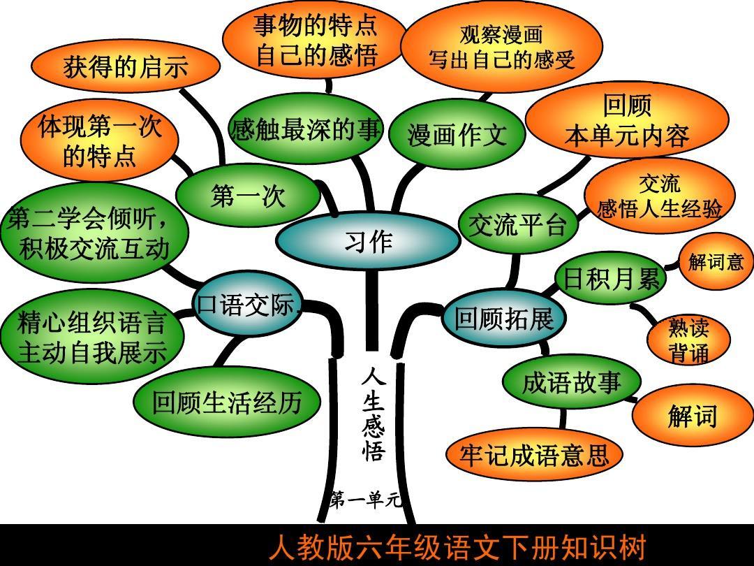 六年级下册语文知识树