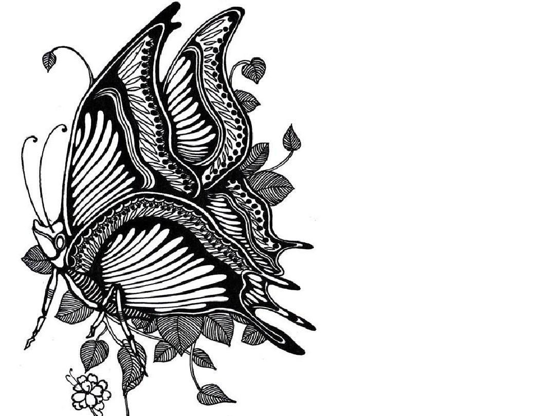 鱼的黑白线描画ppt图片