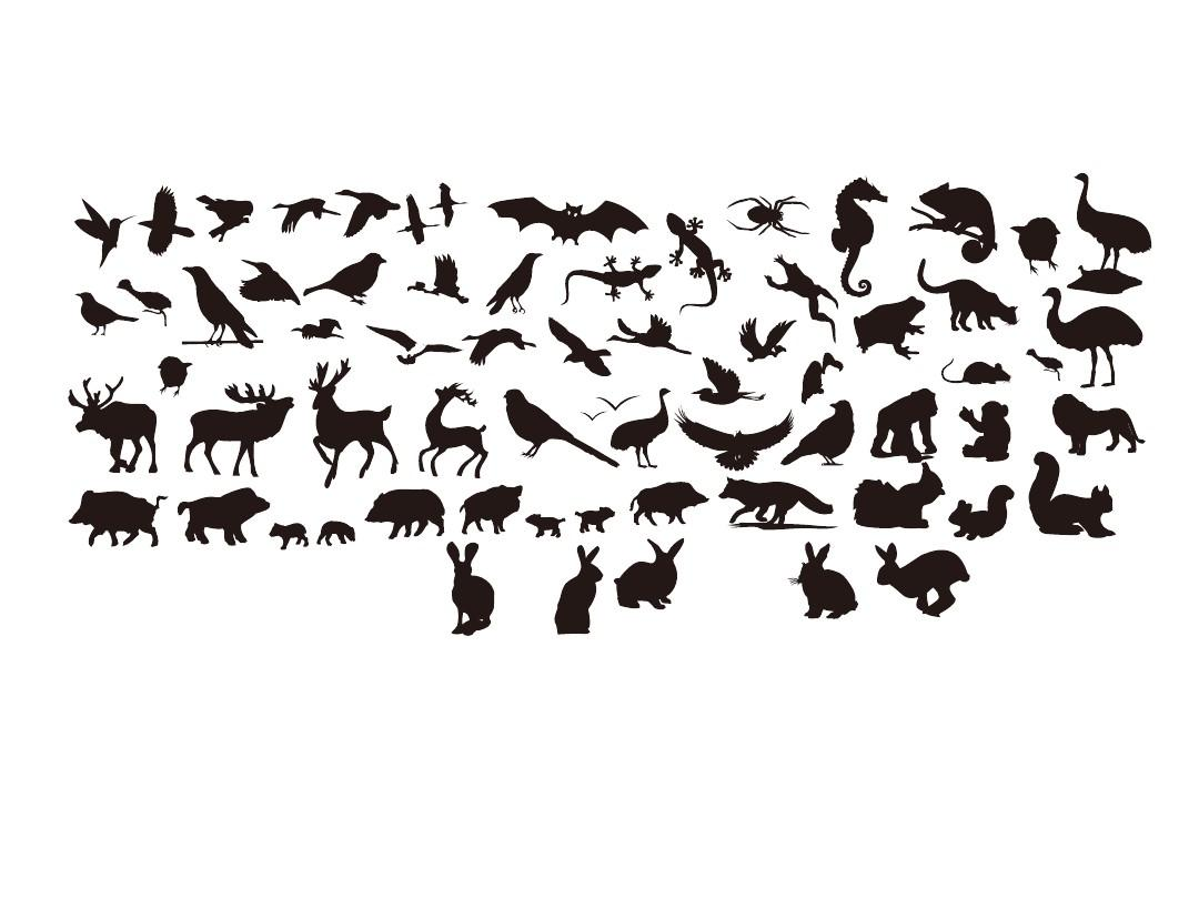 ppt绘制各种动物v动物画ppt茶叶(镂空动物)_wo浙江苍南素材包装设计图片