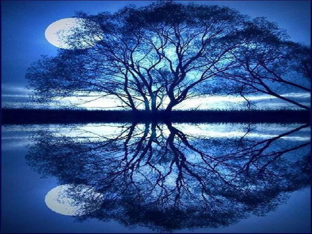 《月迹》 (2)