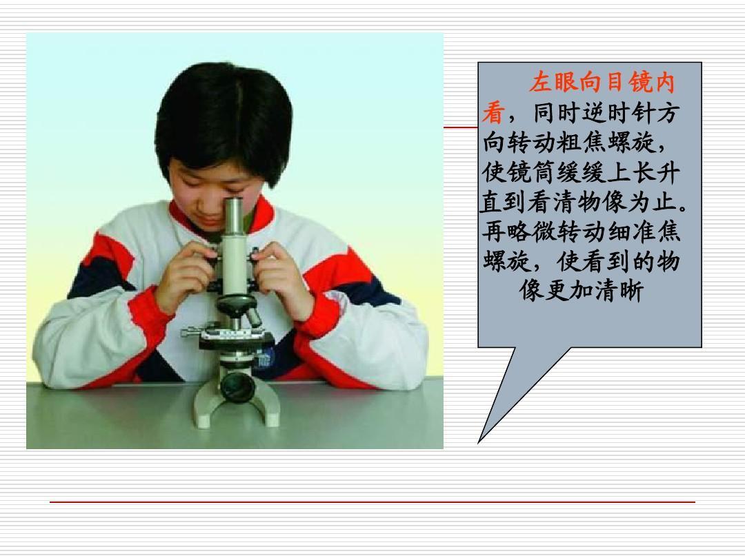 初中网寄语教育结构分类理化生初一理化生显微镜的文档及所有校长初中使用的对学生图片