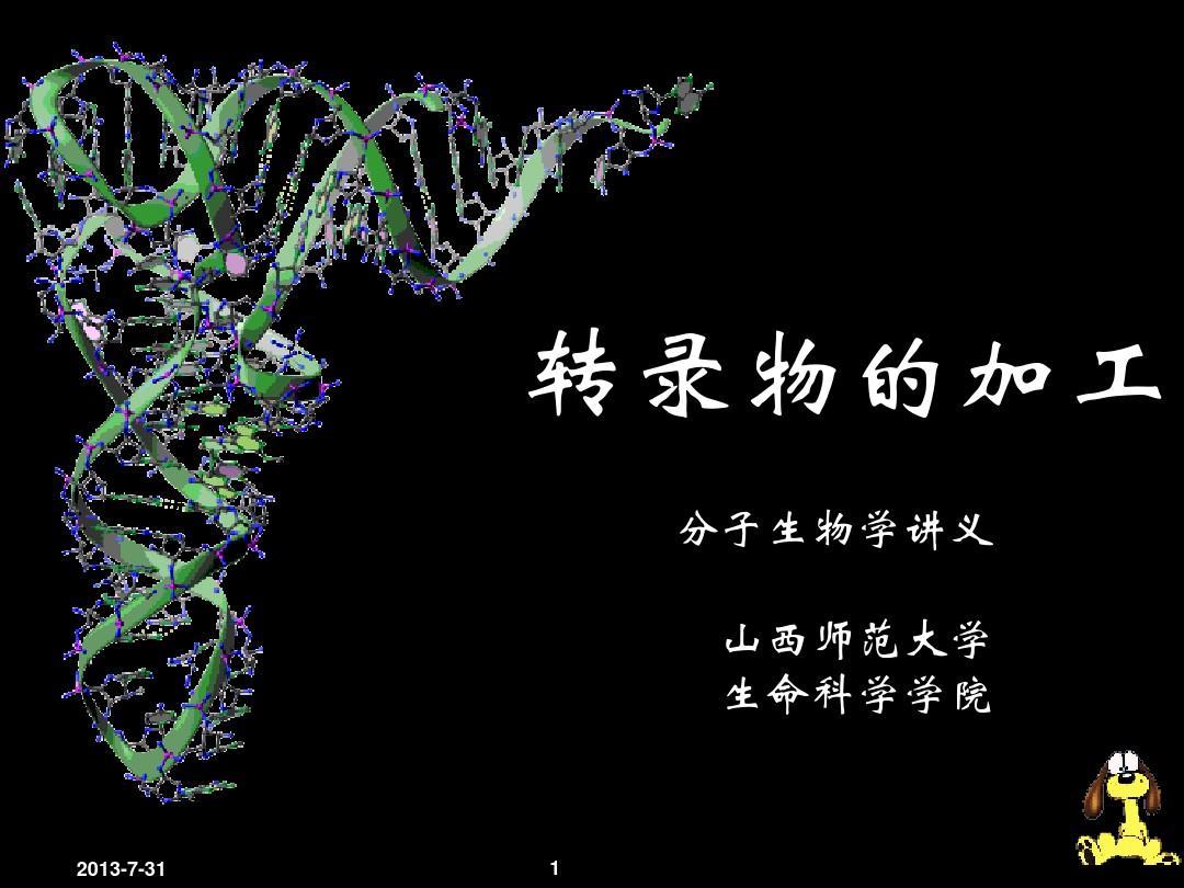 郜刚分子生物学-07-生物信息的传递-3转录后加工-小RNA-RNA拼接1