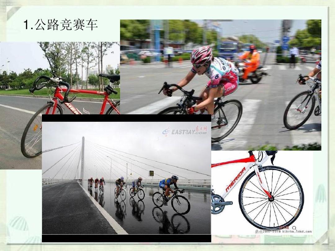 车人机工程学_人机工程学在自行车中的应用ppt