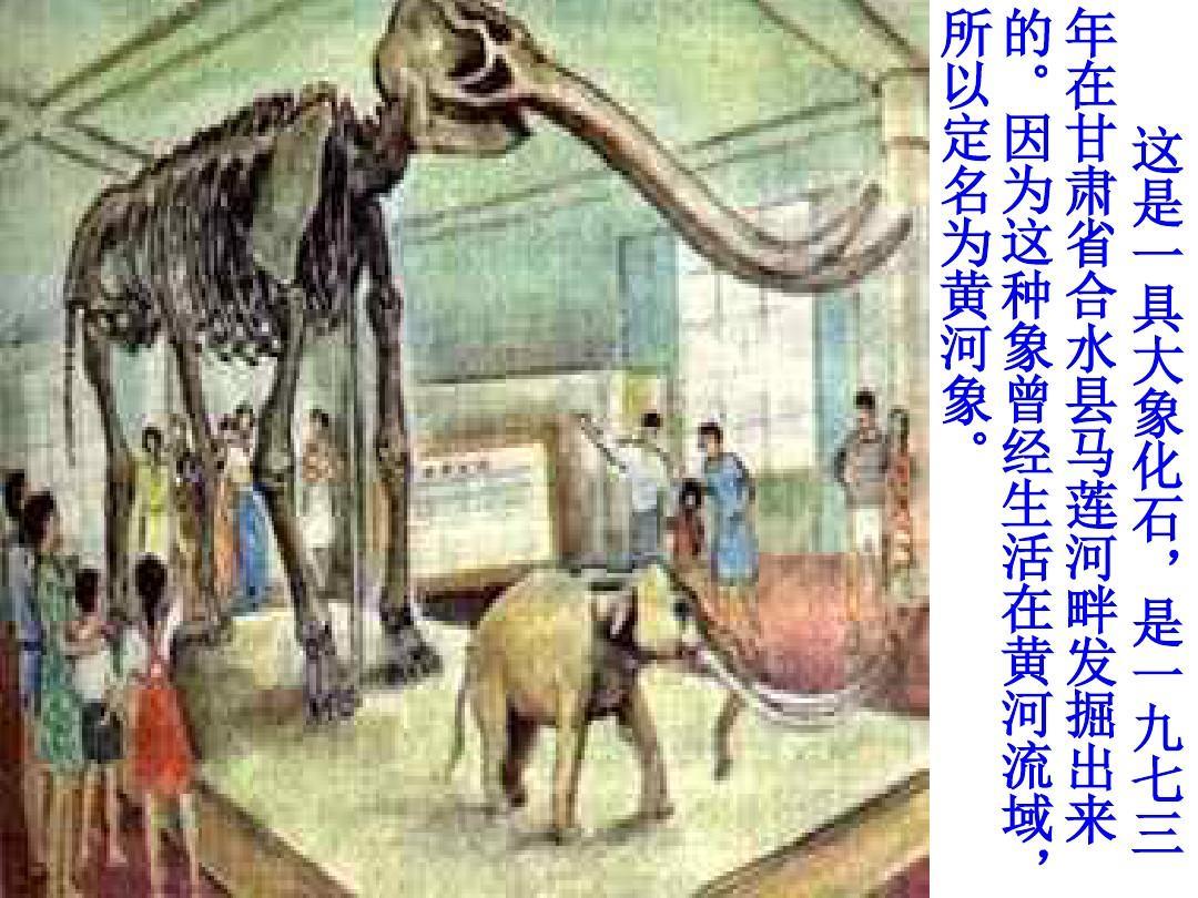 北师大版小学五年级上册语文《黄河象》优质课课件ppt