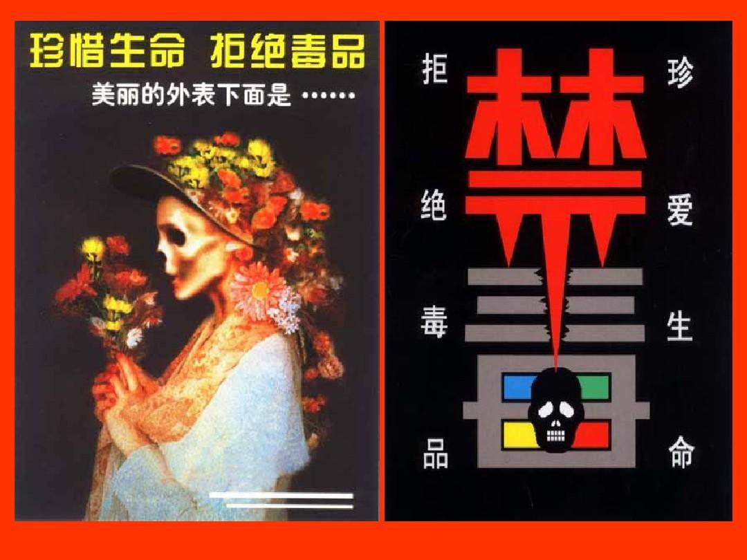 反思v专题专题课件(三)ppt新疆禁毒八年级课后下册图片