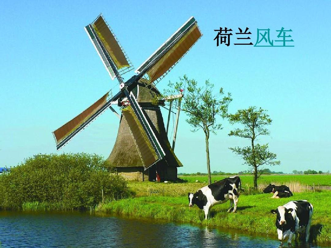 语文下册四风车年级(鄂教版)《荷兰的小学》p新的教学法图片