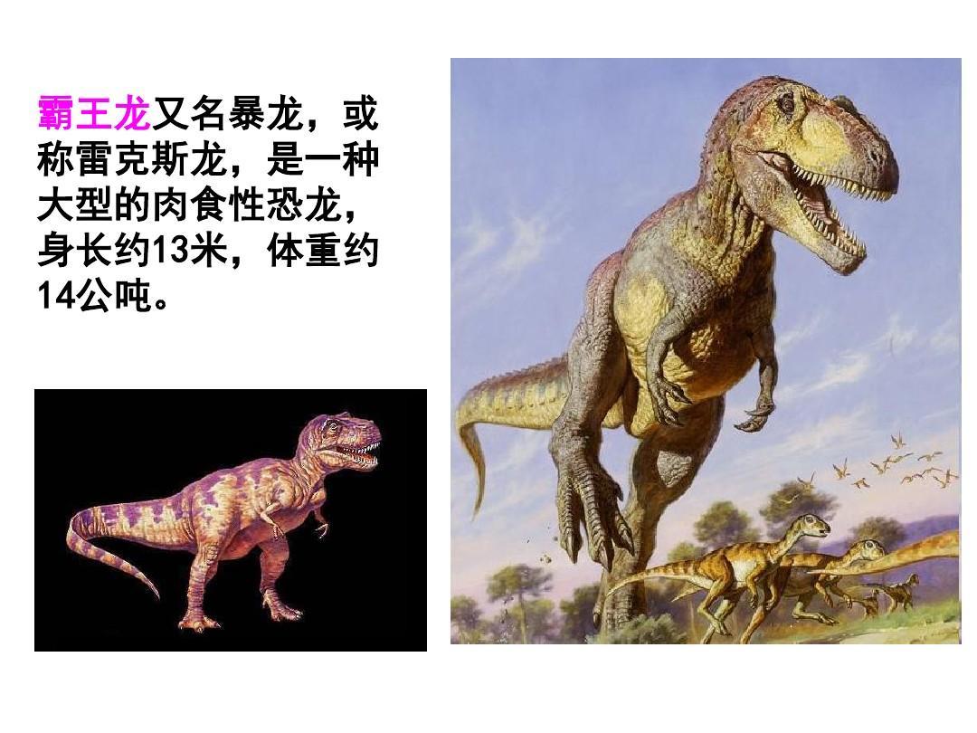霸王龙又名暴龙,或 称雷克斯龙,是一种 大型的肉食性恐龙, 身长约13米