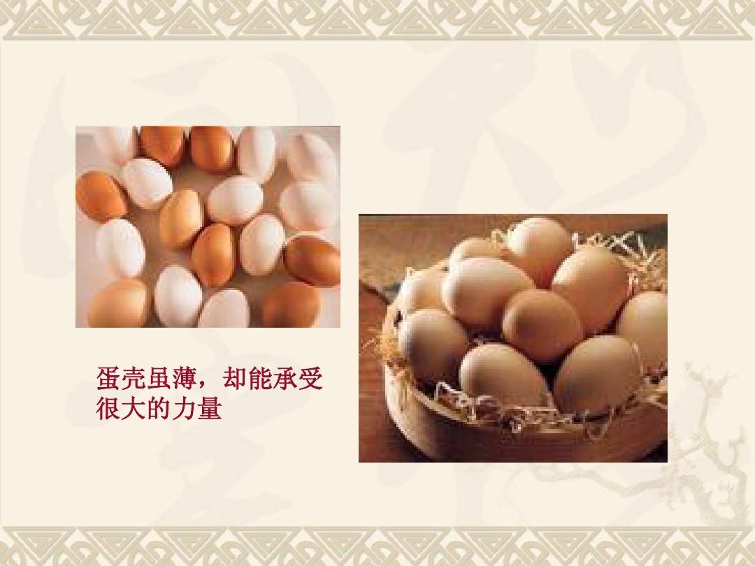 蛋壳虽薄,却能承受 很大的力量图片