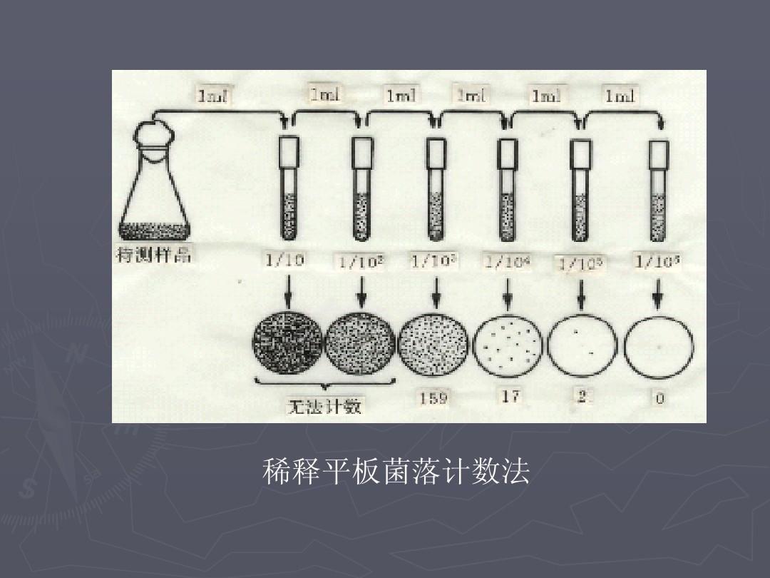 云南大学微生物课件,期末v课件完公司答案ppt三亚广告设计整版有哪些图片