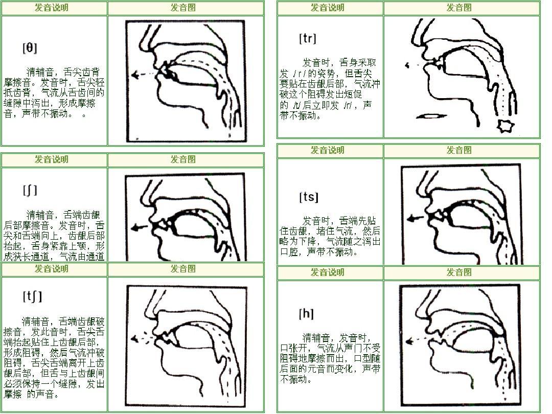 第5页 (共8页,当前第5页) 你可能喜欢 音标认读 国际音标发音口型图片