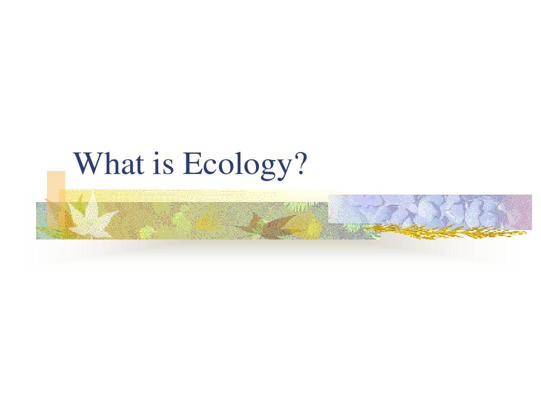 What is EcologyPPT