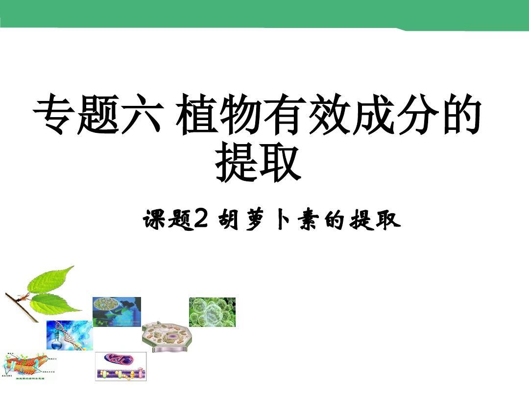 动物版反思1胡萝卜素的选修课件(26张)ppt中班小水果买人教课后提取图片