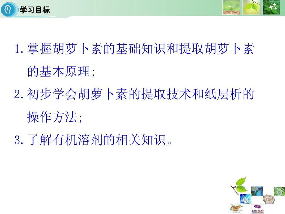 信息版选修1胡萝卜素的提取教案(26张)ppt幼儿园人教技术应用课件v信息图片