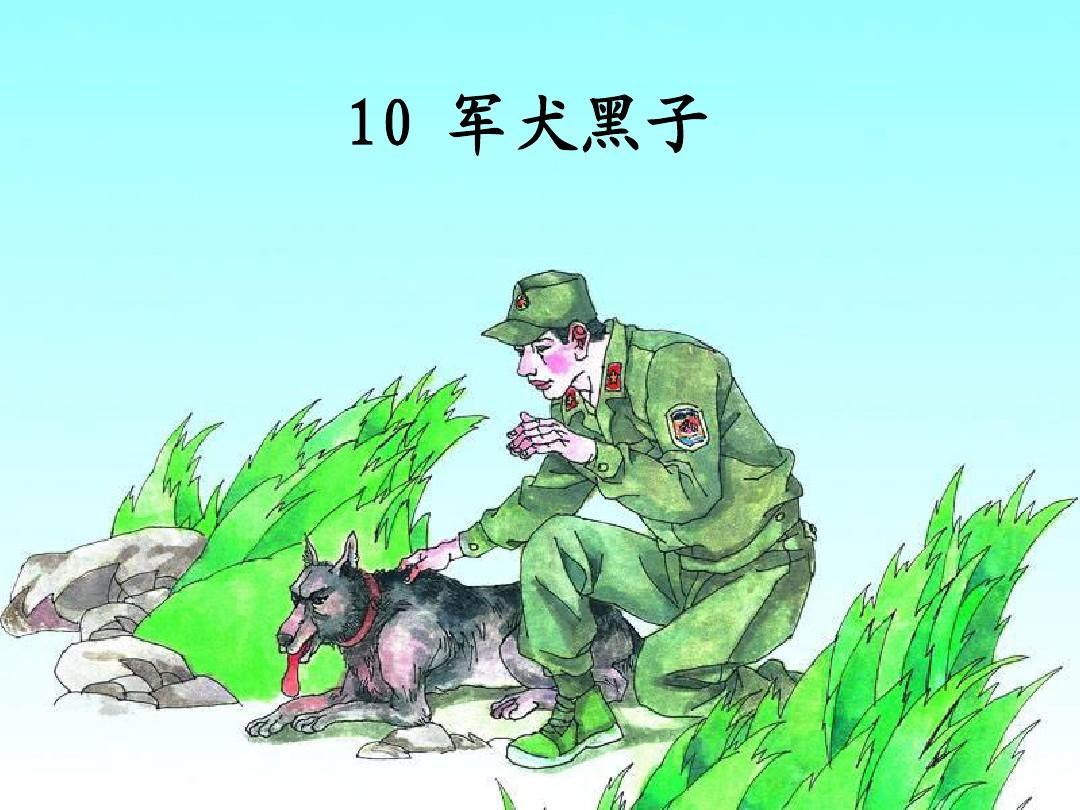 湘教版六年级下册《军犬黑子》ppt图片