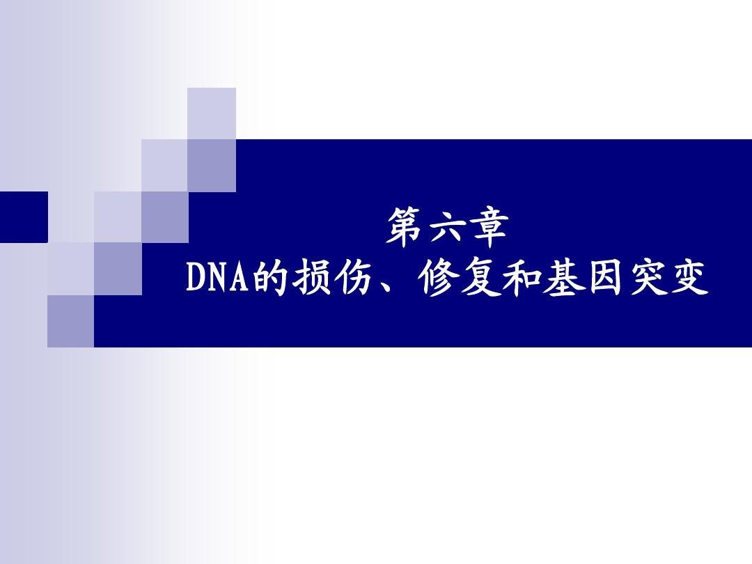 第6章 DNA的损伤、修复和基因突变