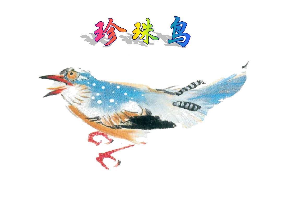 西下册版小学五大班语文美术第21课《珍珠鸟年级师大v下册说课稿图片