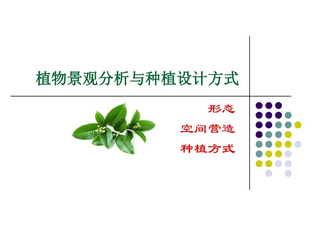 植物景观分析与种植设计原则PPT
