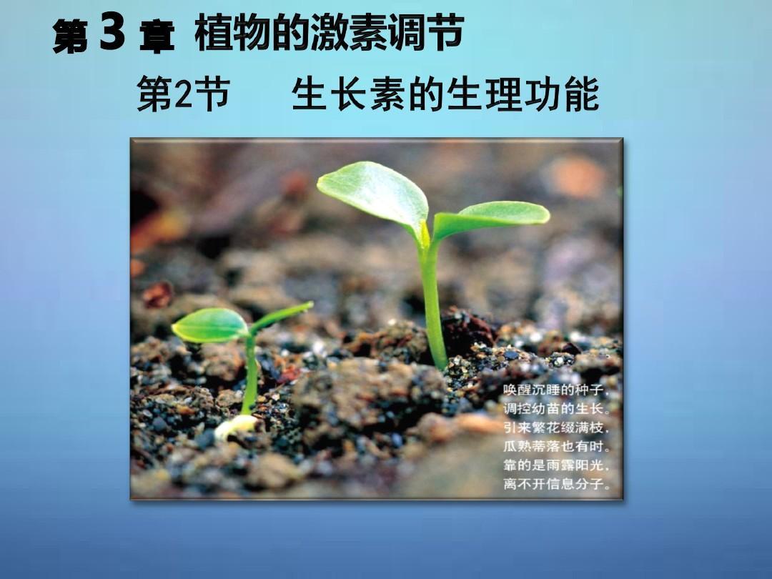 015-2016学年高中生物 3.2生长素的生理功能同