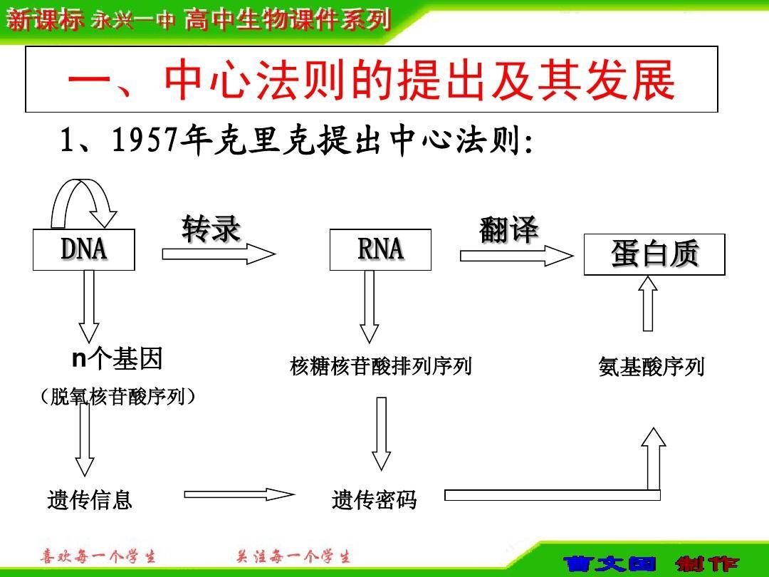 以此来控制性状途经一就是dna(转录过程)rna(翻译过程)蛋白质合成的图片