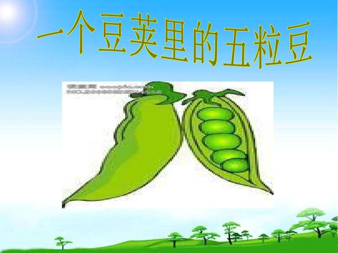 语文a版五年级下册《一个豆荚里的五粒豆》ppt公开课课件[精品]