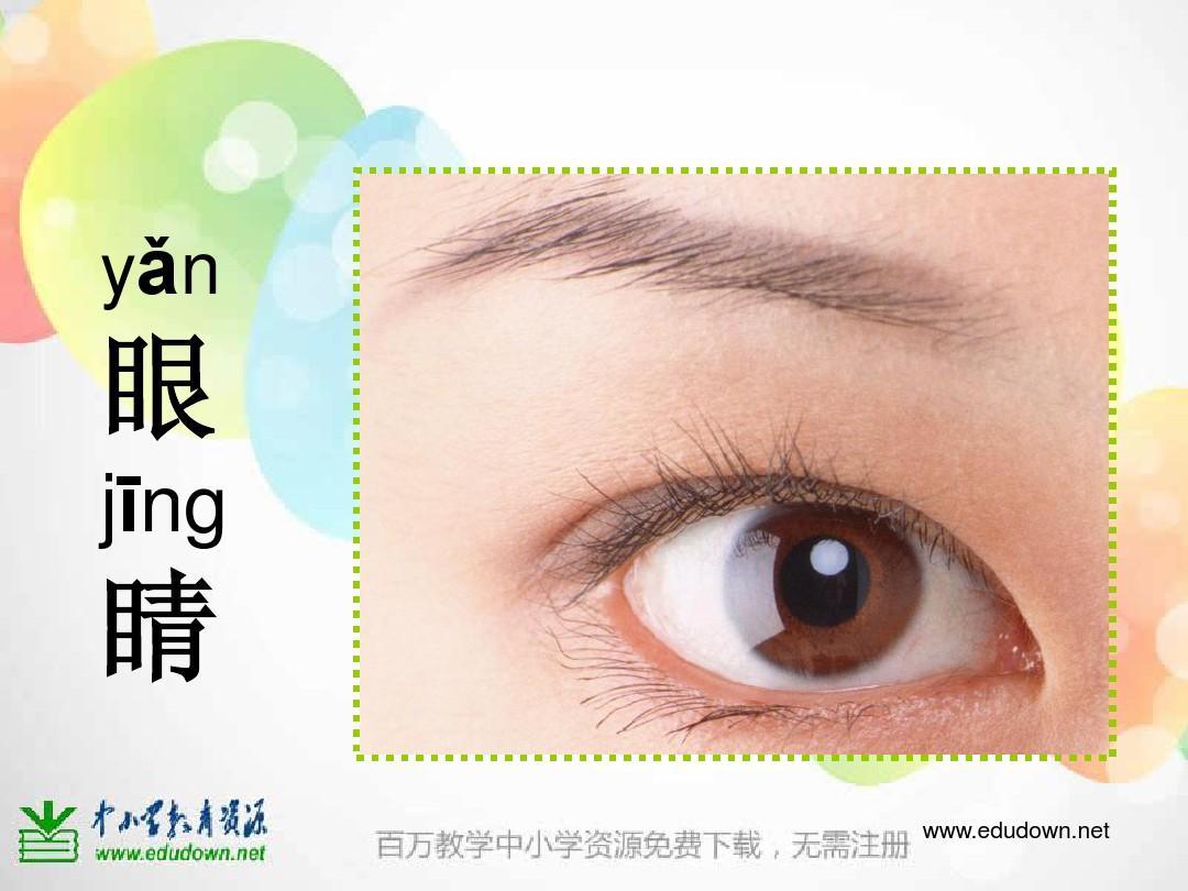 《大眼睛》ppt课件  湘教版小学美术一年级上册《大眼睛》ppt课件图片
