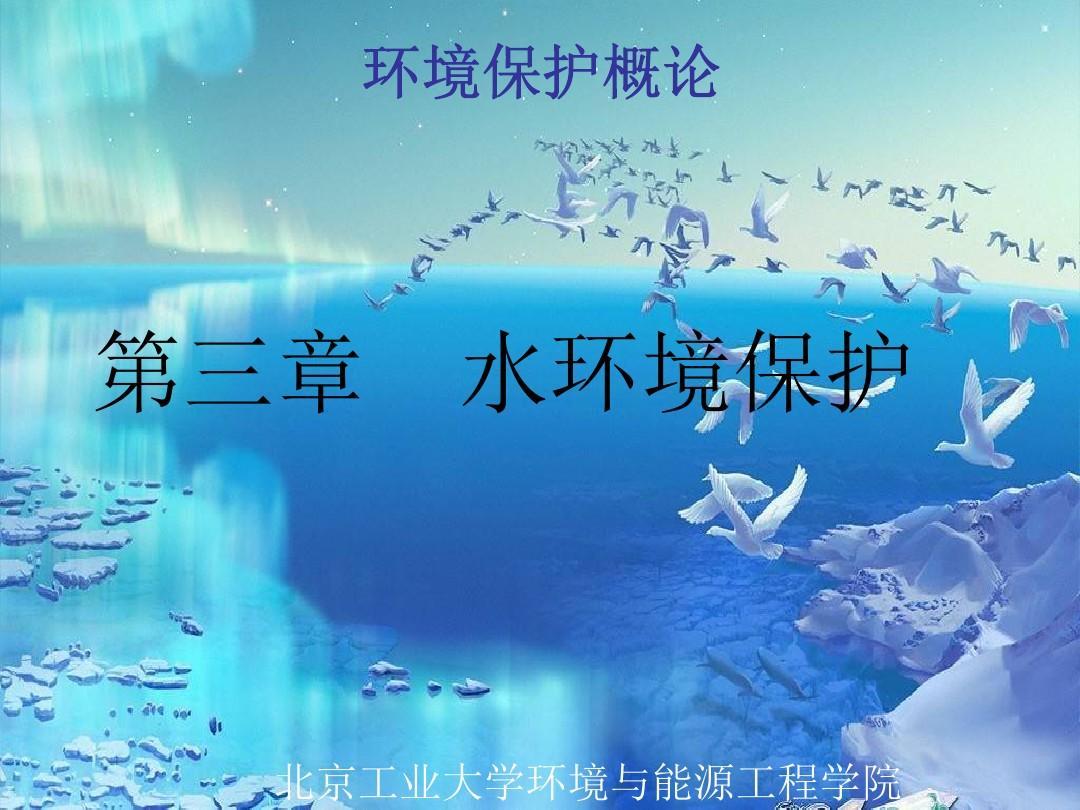 环境保护概论试题_水环境保护-环境保护概论-课件-03_word文档在线阅读与下载_无忧文档