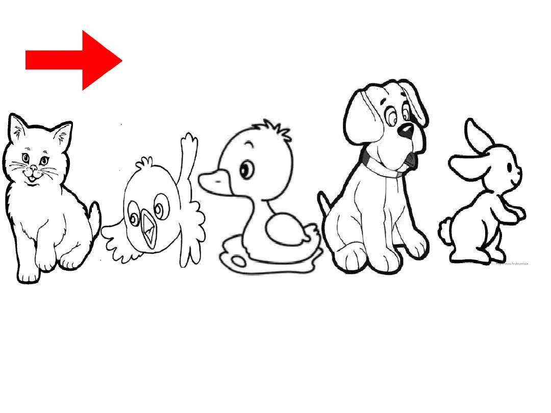中班数学:小动物排队ppt图片