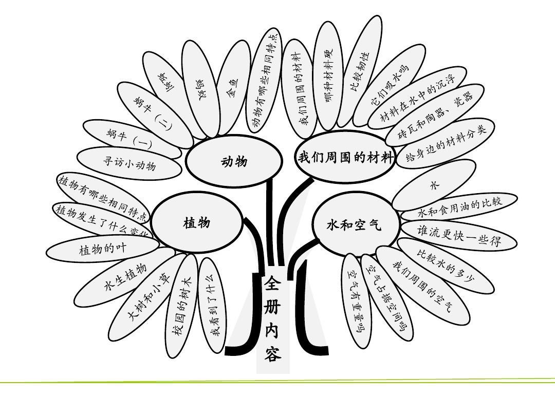 小学科学三年级上册科学知识图解ppt