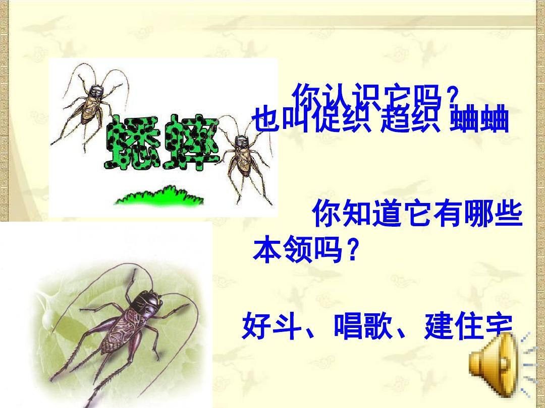 人教版新课标四年级语文上册《蟋蟀的住宅》课件ppt