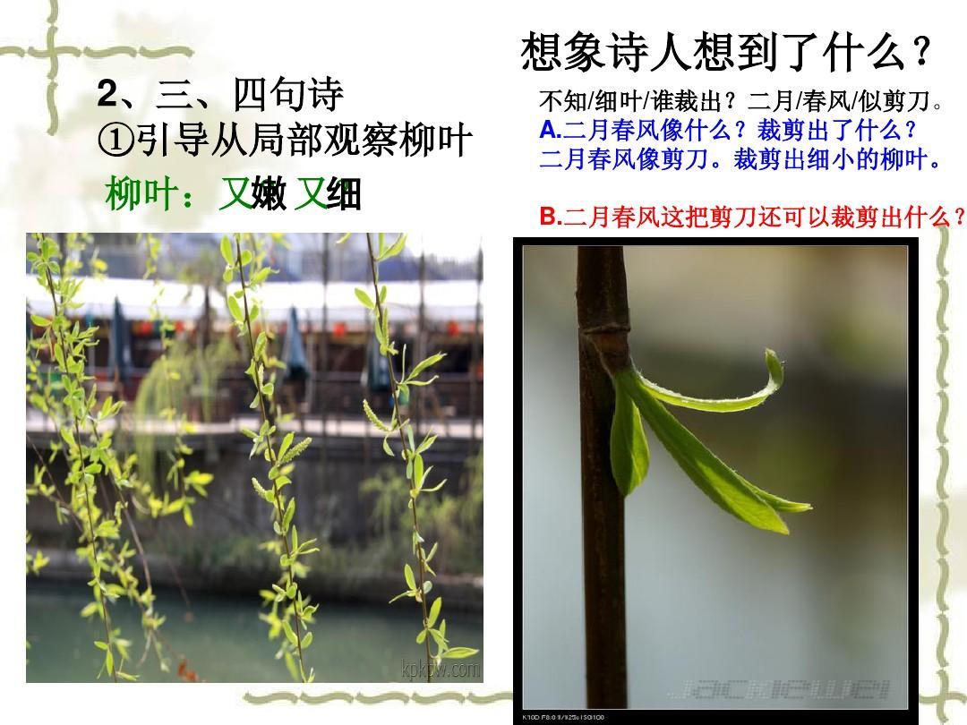咏柳说课稿课件ppt五年级食品安全a课件教学设计图片