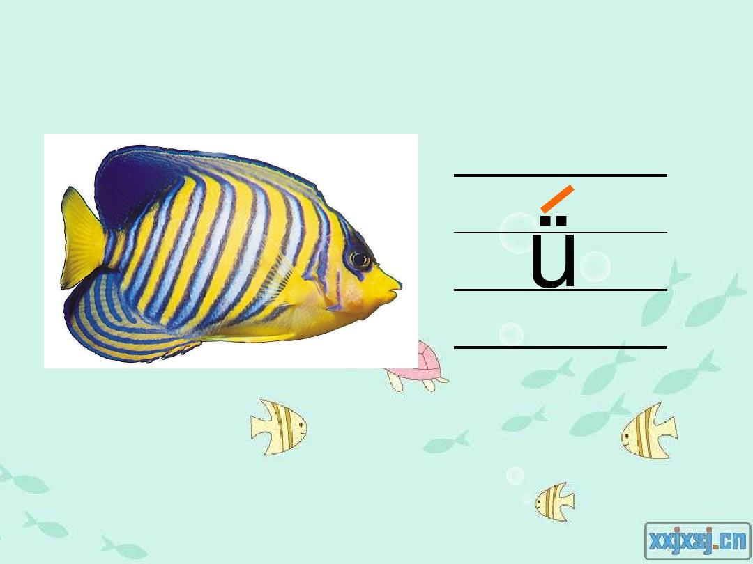 汉语拼音iuvyw的优质教案图片