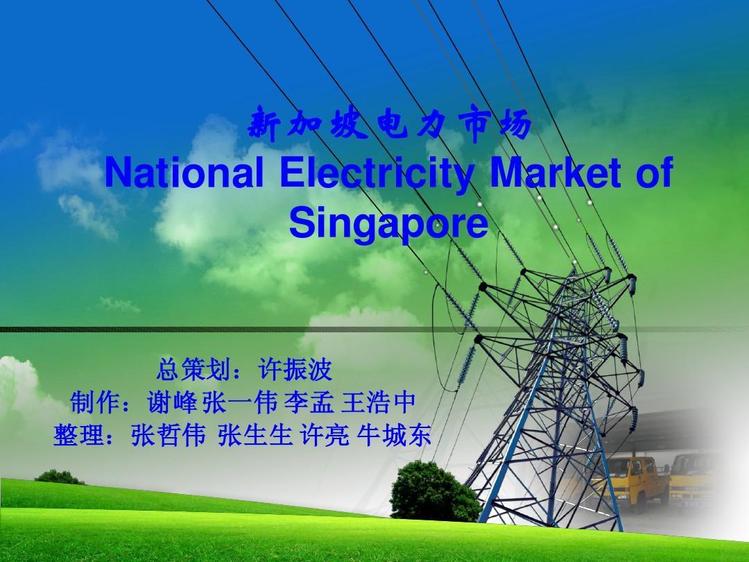 新加坡电力体制介绍_新加坡电力市场ppt