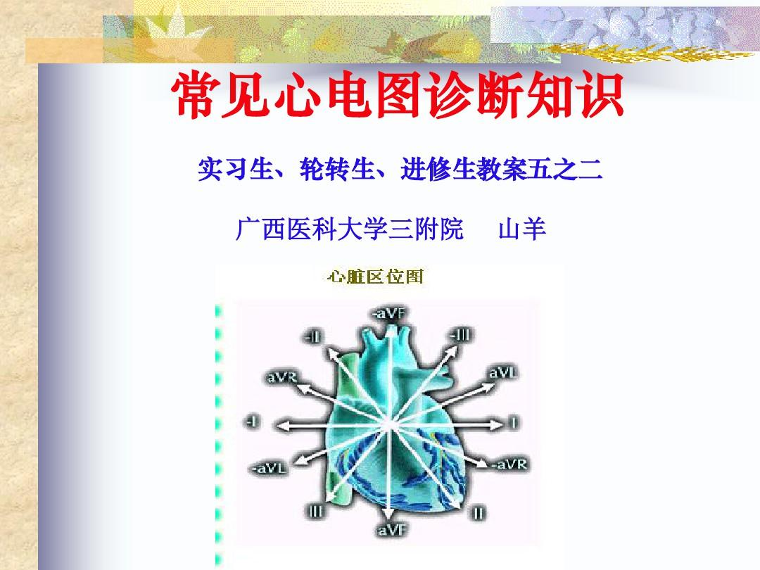 常見心電圖診斷-實習生進修生教案之二96頁PPT