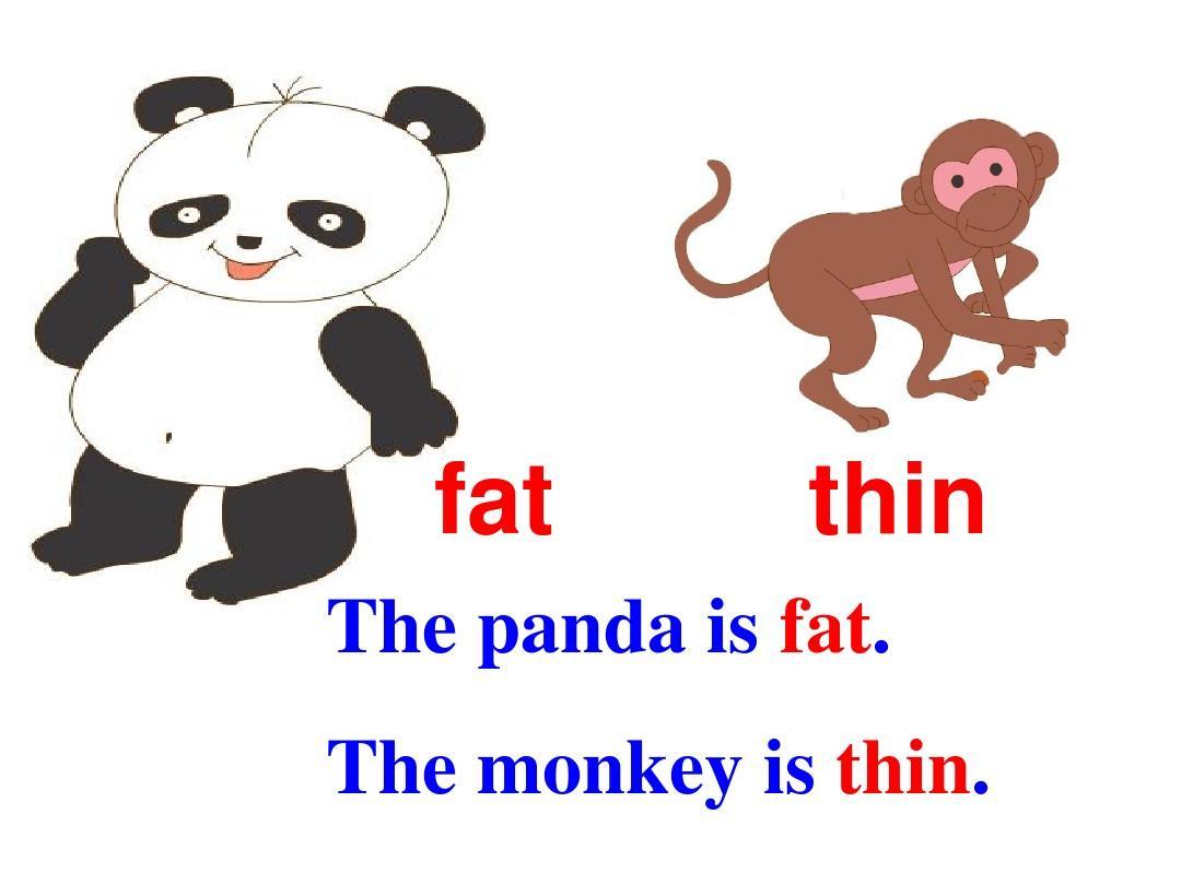 fat英语是什么_漂亮是全部吗+fat+cat_漂亮是全部吗fat cat