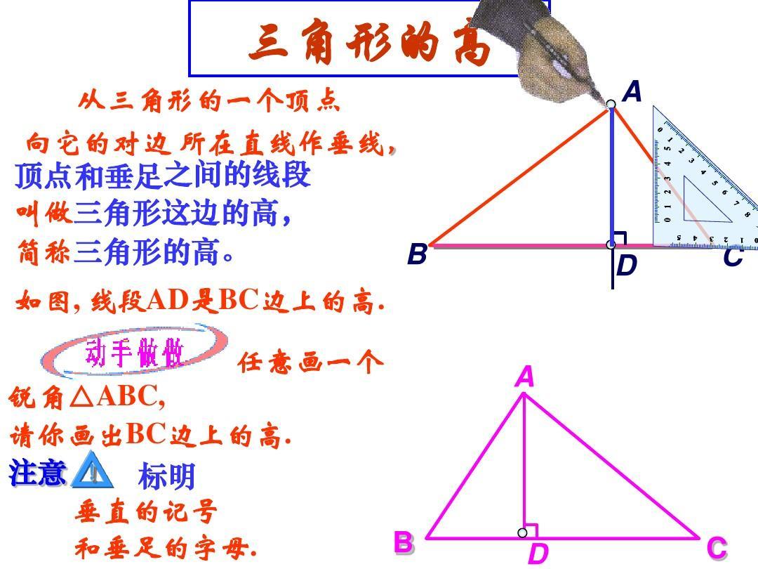 1三角形高,中线与角平分线(第2课时)课件 华东师大版ppt图片