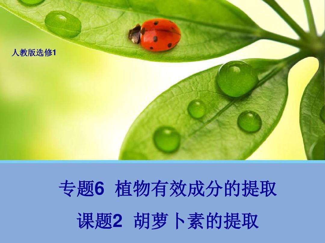 2胡萝卜素的选修笛子(教学版提取1)ppt人教课件群图片