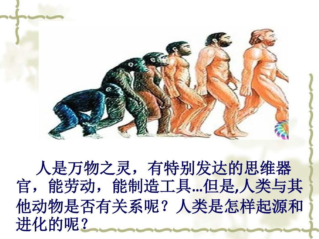生物:24.4.1-人类的起源和进化-课件(苏教版八年级下)