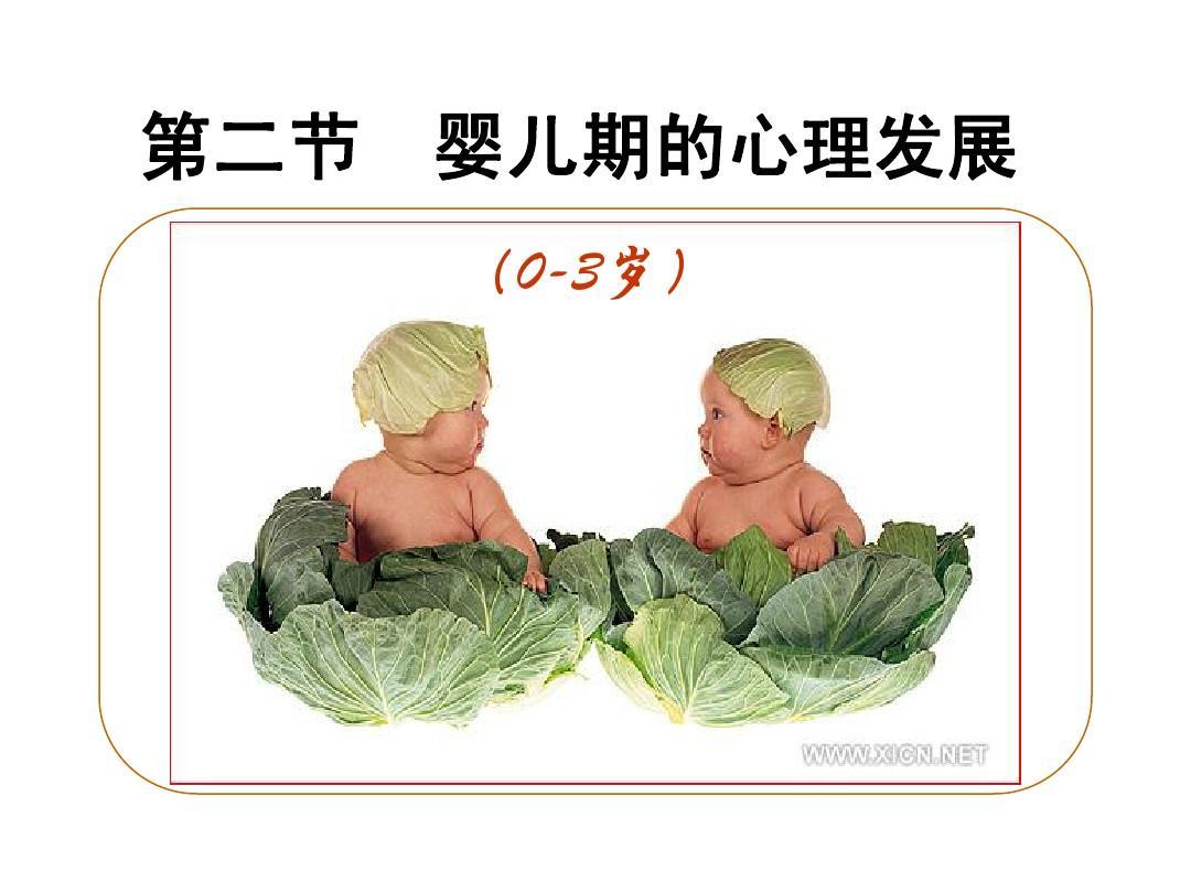 婴儿期2Microsoft PowerPoint 演示文稿PPT
