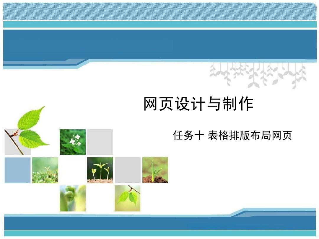 10.任务十 表格排版布局网页ppt图片