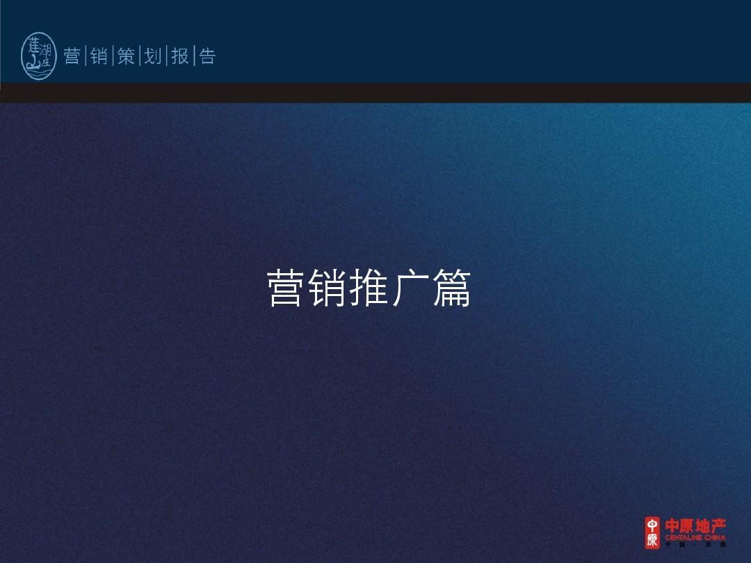 中原地产__莲湖山庄(营销)报告