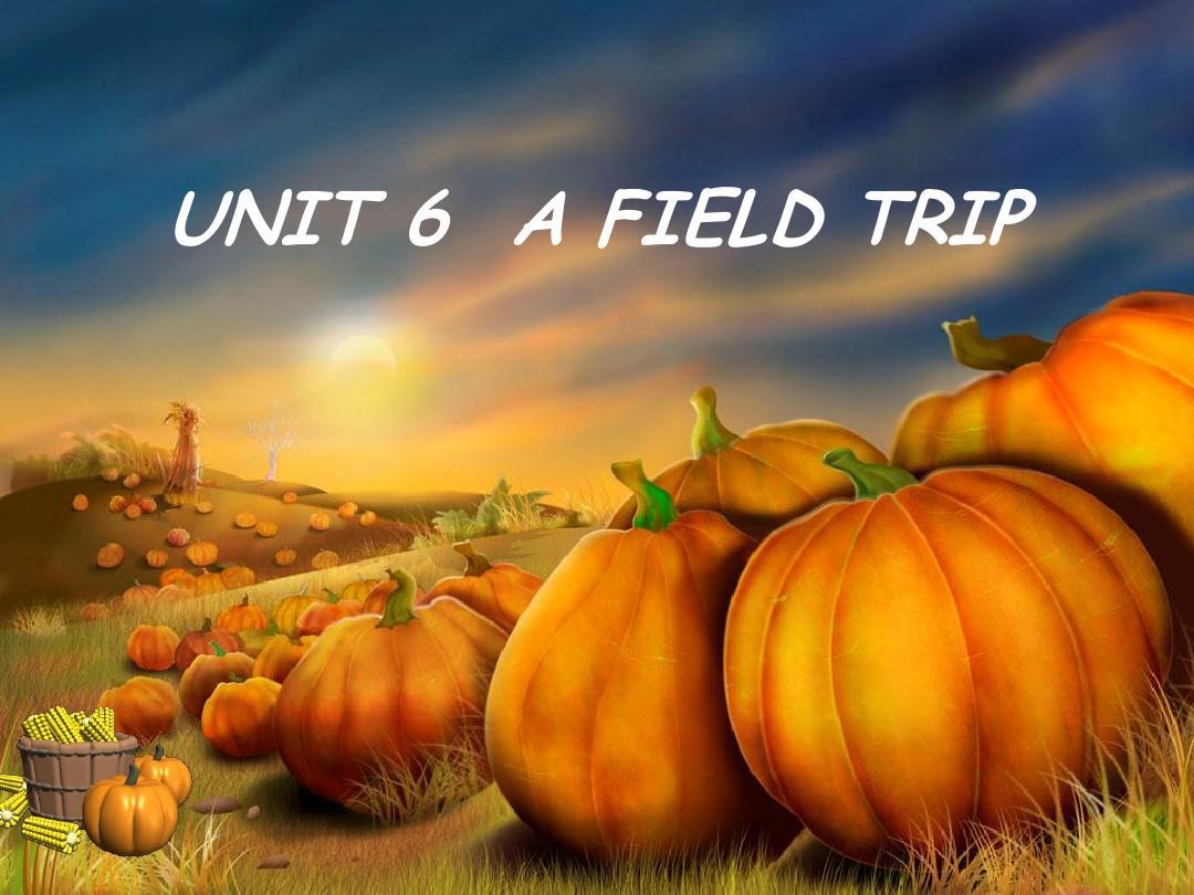 unit6 a field trip (1st)ppt