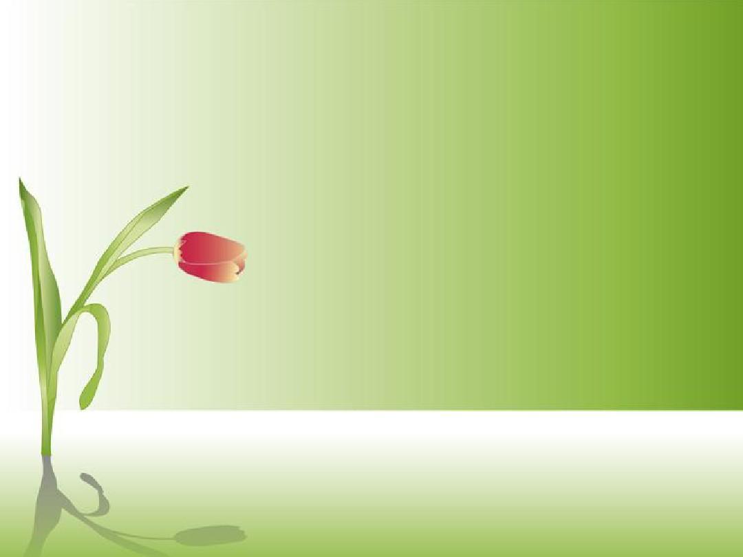 兰花(纯背景色的ppt)图片