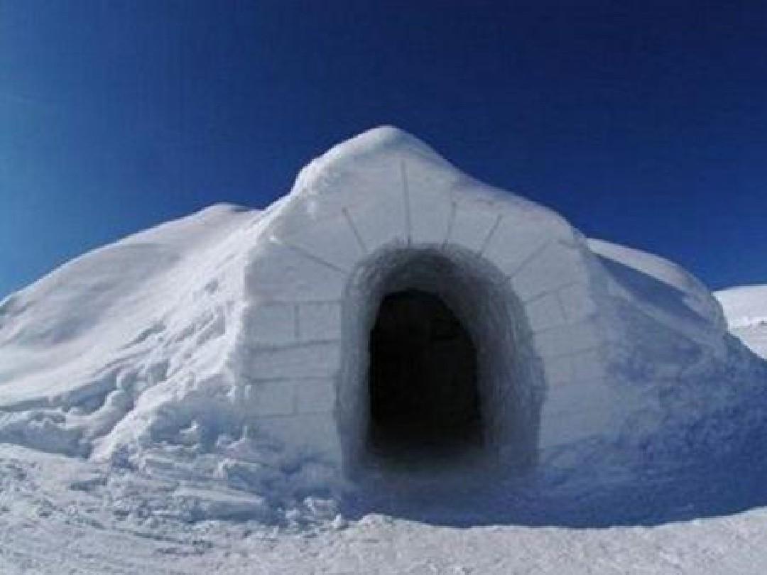 25爱斯基摩人的冰屋ppt图片